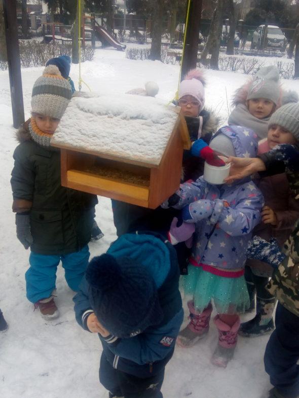 Dokarmianie ptaków zimą – Muchomory