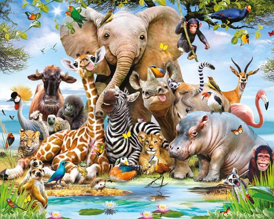 Zwierzęta duże i małe